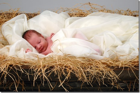 The Birth Narratives Don't Prove a Thing